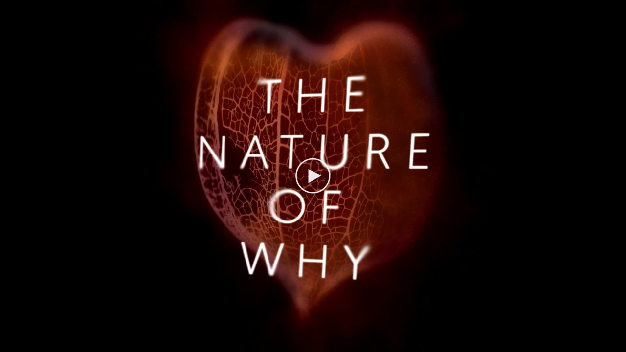 The Nature of Why Promotional Video